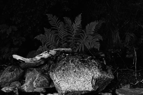 eberhard franke photography freestyle. Black Bedroom Furniture Sets. Home Design Ideas